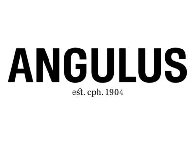 angulus Kinderschuhe in Braunschweig